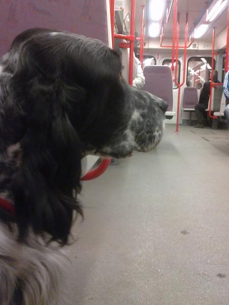 Eimee v metru